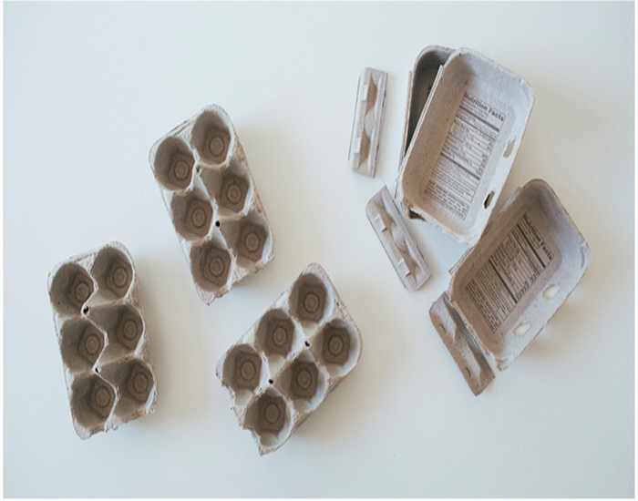 Recycled Egg Cartons