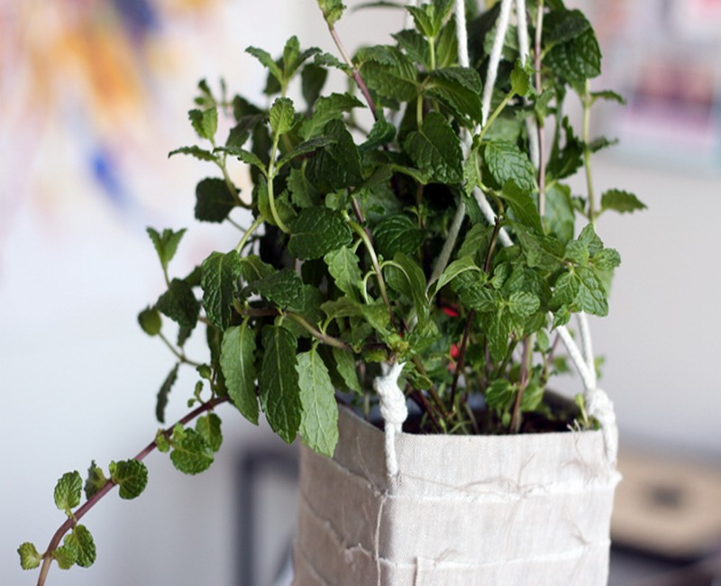 DIY Recycled Beautiful Hanging Planter Idea