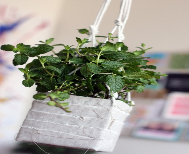 DIY Recycled Beautiful Hanging Planter