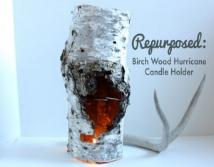 Unique Style of Decoration with DIY Recycles Birch Piece Candle Holder