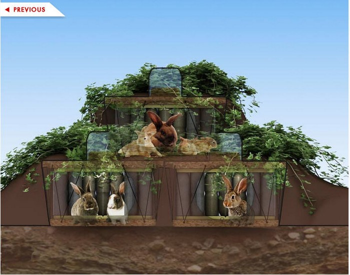 DIY Recycled Bottles Beautiful Pet House