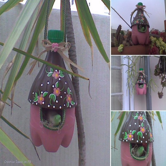 Recycled Parrot in House