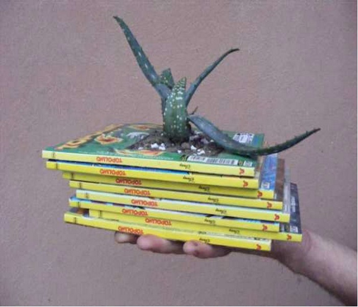 Recycling Old Books Handmade Planter Designs