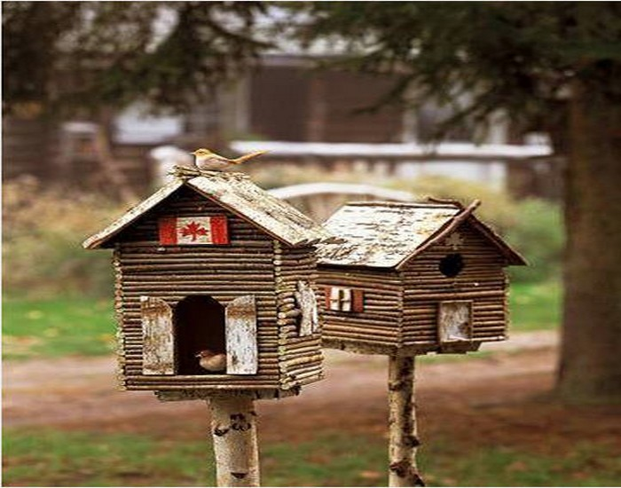 Recycling Wood for Birdhouses Designs