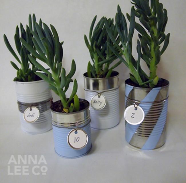DIY Tin Cans Planter