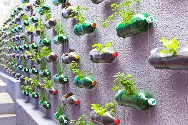 Recycle Plastic Bottles Gardening Idea