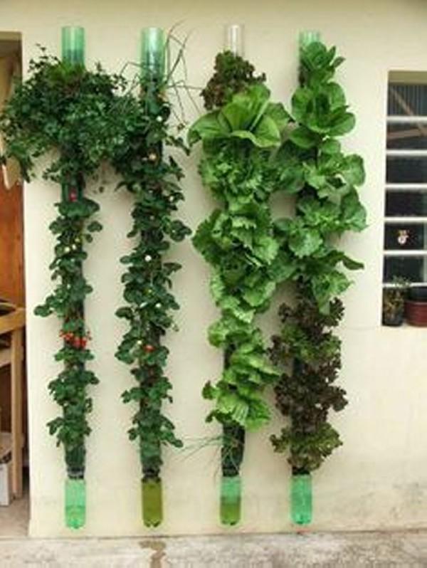 Recycled Plastic Bottles Vertical Gardening