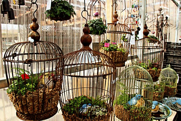 Repurposed Bird Cages Patio Decor