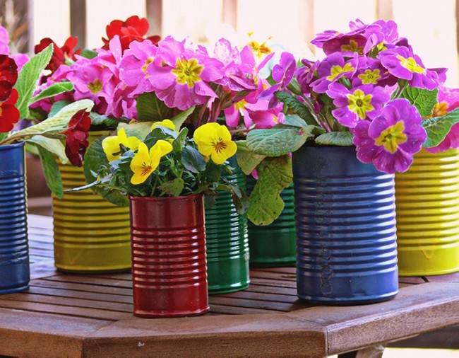 Tin Cans Beautiful Flowers Pot