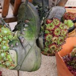 Recycled Shoes Garden Planters