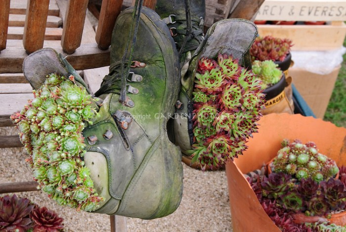 Recycled shoes garden planters recycled things - Recycled containers for gardening ...