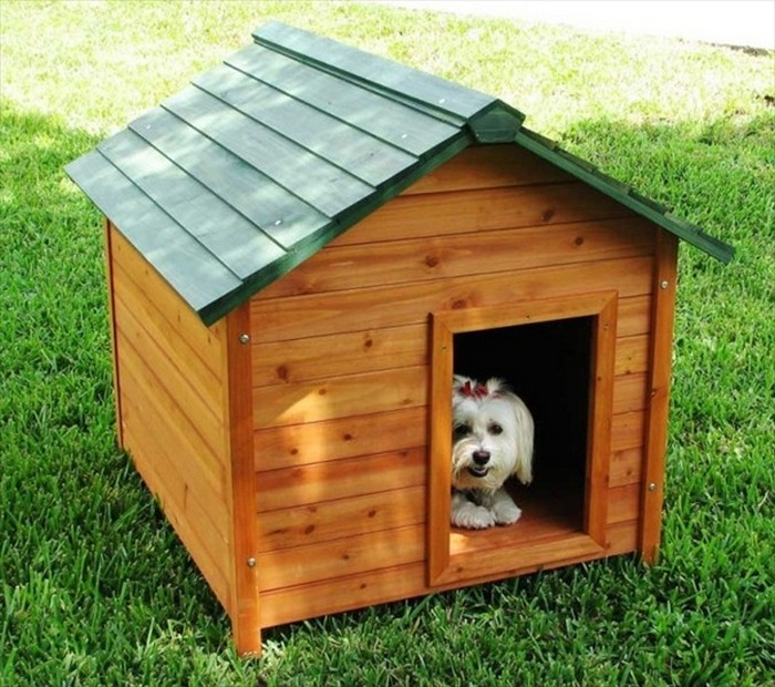 Beautiful Pallet Dog House