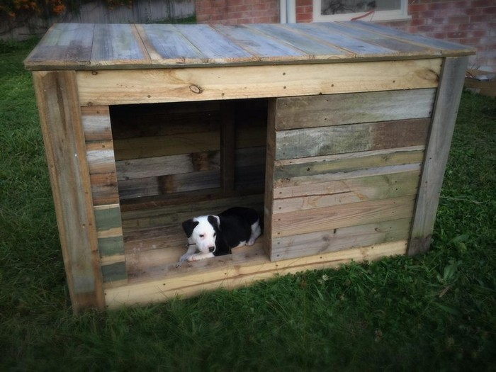 Pallet Wooden Dog House
