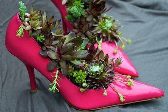 Recycled Old Shoes Planter