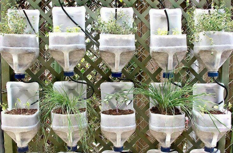 Recycled Plastic Milk Bottles Garden