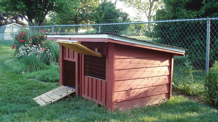 Chicken coops made from pallets recycled things for Build your own duck house