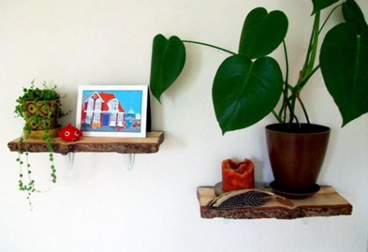Log Wall Shelves for Home Decor
