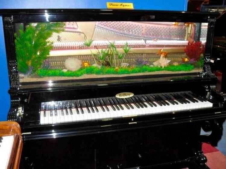 Old Piano Aquarium