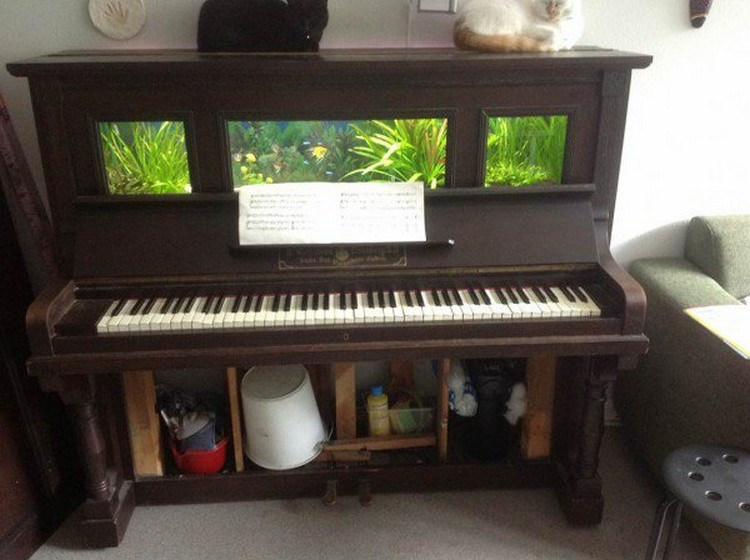 Piano Recycled Aquarium