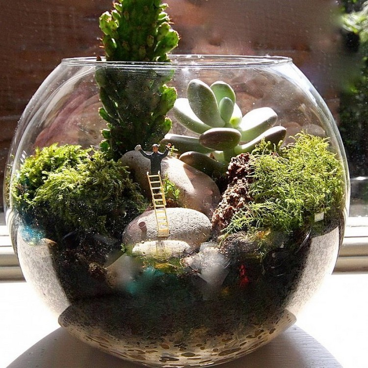 decorate your home with terrariums recycled things. Black Bedroom Furniture Sets. Home Design Ideas