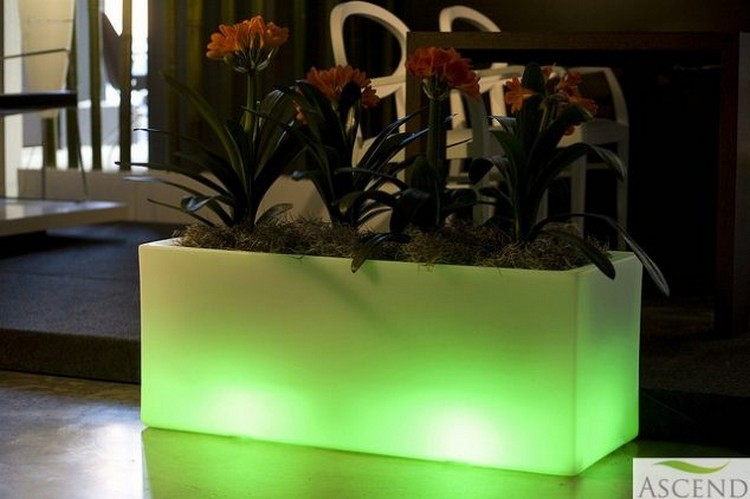Illuminated Planter