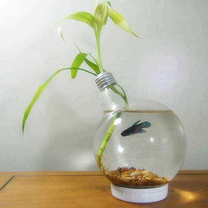 Reused Light Bulb Idea