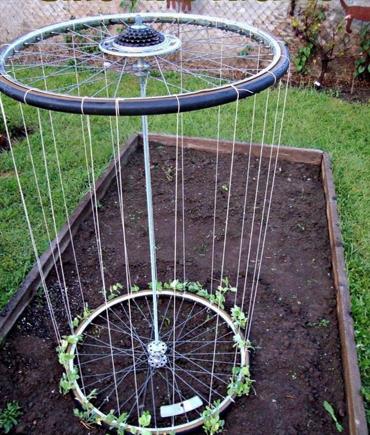 Bicycle Wheels Recycle Trellis