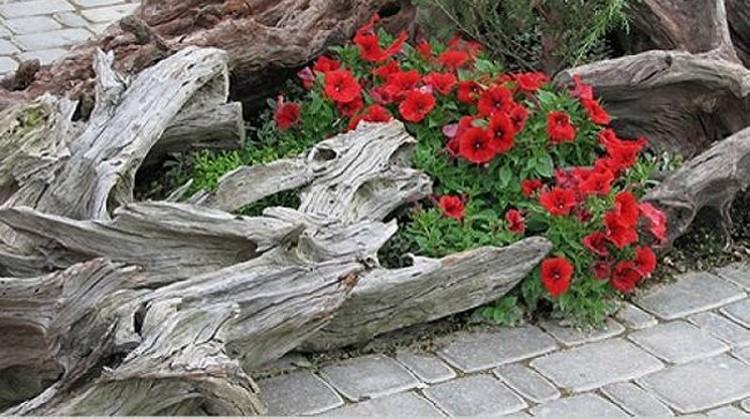 Driftwood Garden and Yard Decor