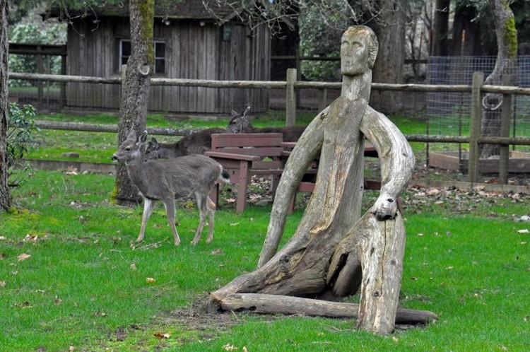 Driftwood Yard Sculptures