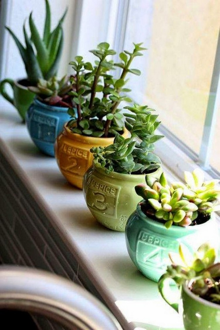 Planter Pots for Home Decor