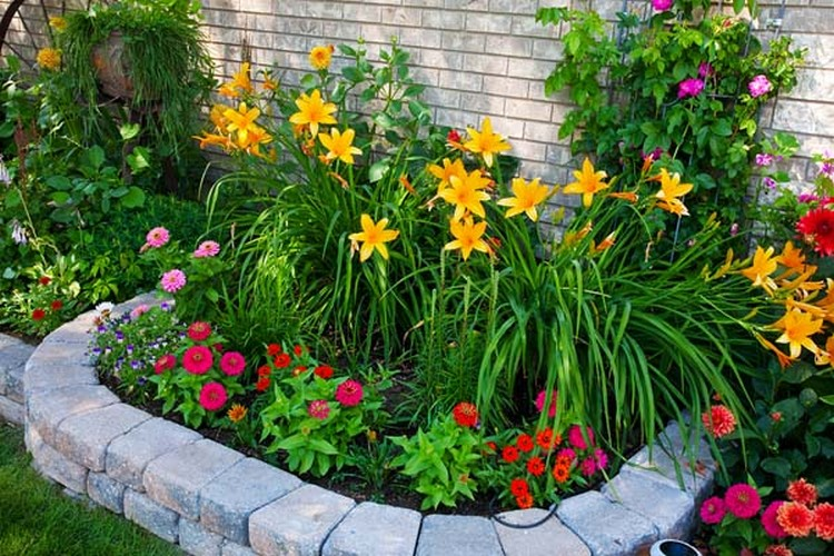 Ingenious tips for building flower bed on budget for Flowers for flower bed ideas
