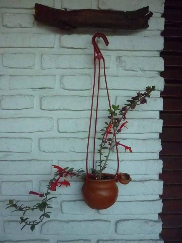 Hanging Plant Art