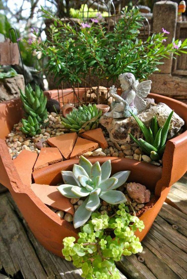 Mini Garden of Succulents