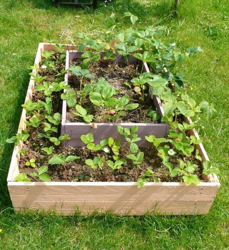 Pallet Tiered Planter
