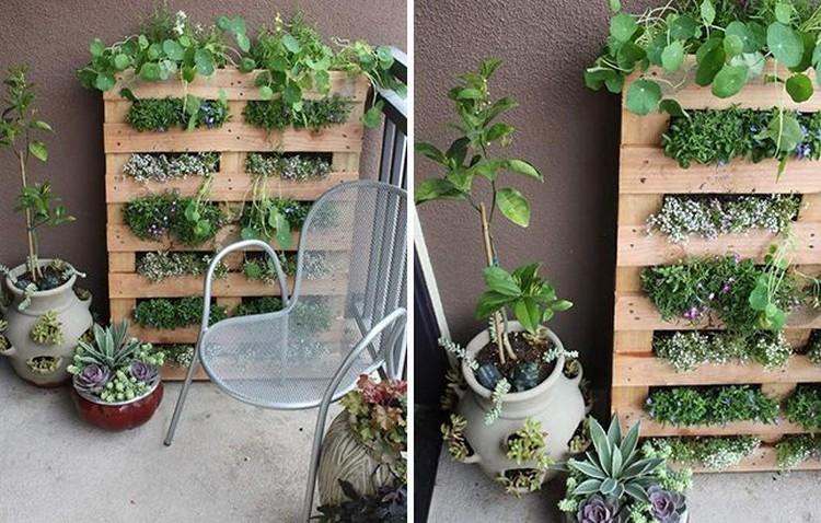 Small Space Pallet Garden