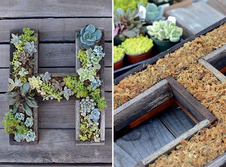 Succulent Letter DIY