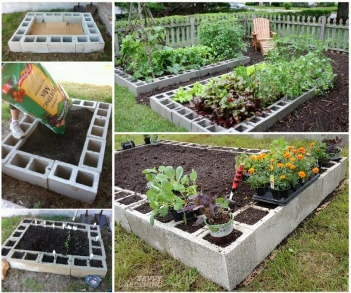 Cinder Blocks Gardening Idea