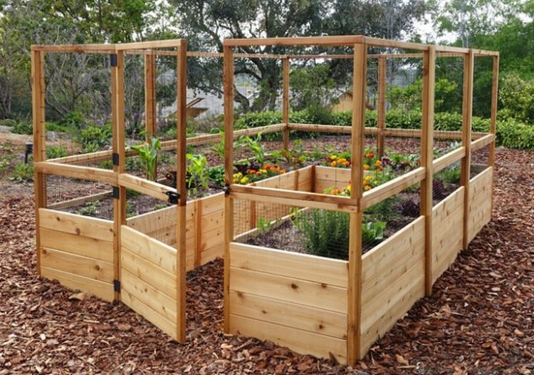 Raised Garden Bed with Fence for Garden