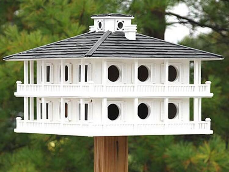 Wonderful Birdhouse