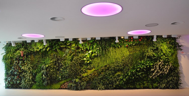 Awesome Vertical Garden for your Home Decor
