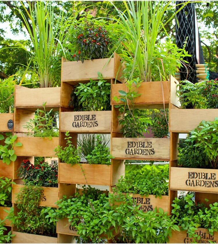 Awesome Vertical Garden for your Home