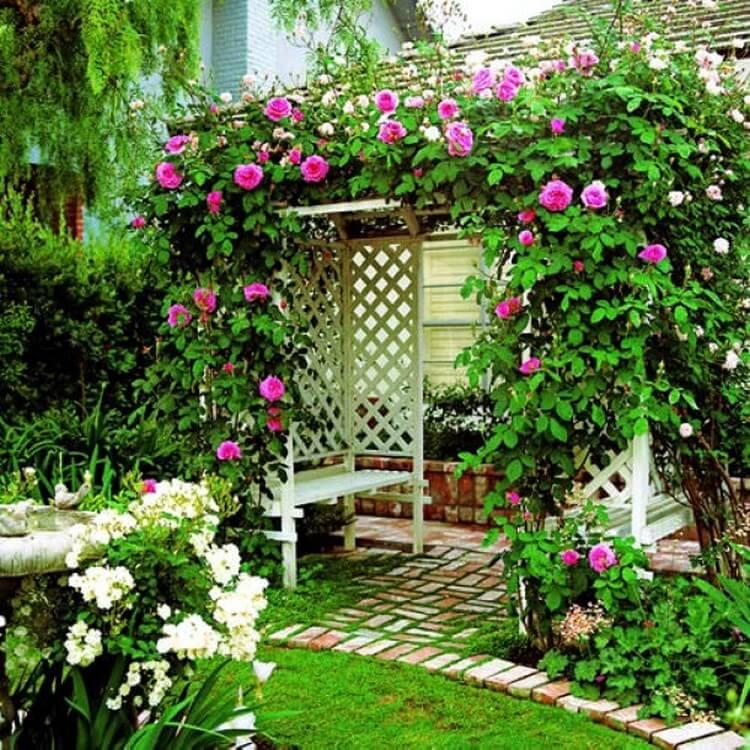 Vertical Garden and Landscaping Ideas