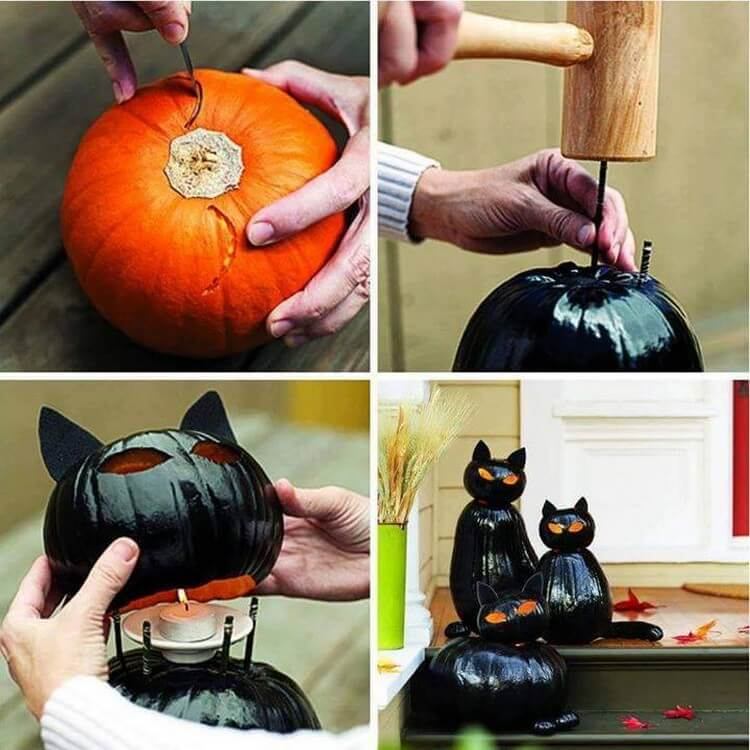 Black Cat-O-Lanterns