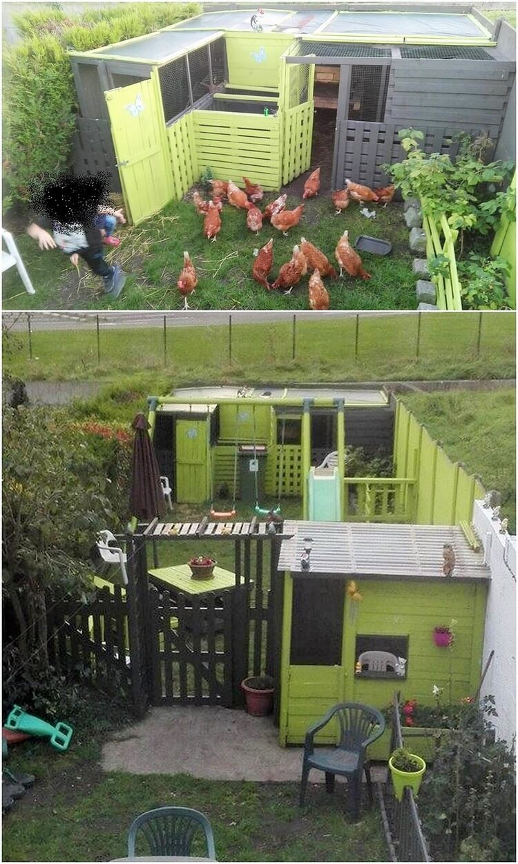 Pallet Chicken Poultry Farm
