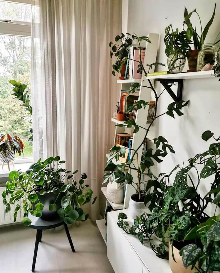 Bohemian Home Interior Decor (11)
