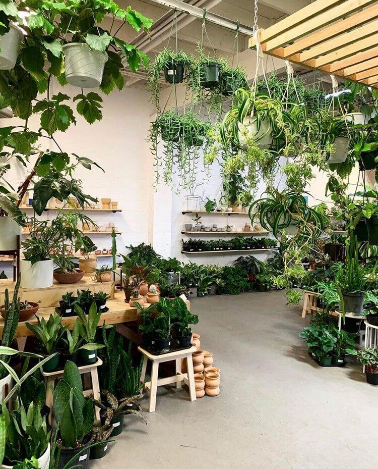 Bohemian Home Interior Decor (2)